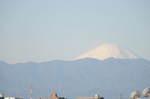 2010_01012010年元旦富士山0027.JPG
