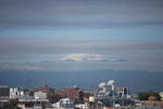 2010_04134月の雨上がり0002.JPG