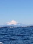 三浦の海から見た富士山.jpg